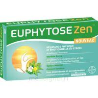 EuphytoseZen Comprimés B/30 à La Ricamarie