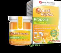 Forte Pharma Propolis intense Gelée Pot/40g à La Ricamarie
