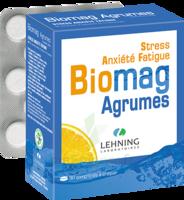 Lehning Biomag Comprimés à Croquer Agrumes B/90 à La Ricamarie