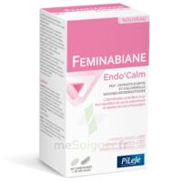 Pileje Feminabiane Endo'calm Comprimés + Gélules B/60+30 à La Ricamarie