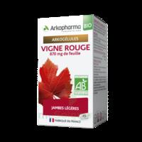 Arkogélules Vigne Rouge Bio Gélules Fl/45 à La Ricamarie