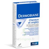 Pileje Dermobiane Cheveux & Ongles 40 Gélules à La Ricamarie