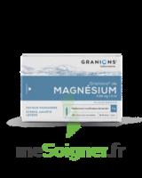 Granions De Magnesium 3,82 Mg/2 Ml S Buv 30amp/2ml à La Ricamarie