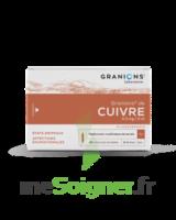 Granions De Cuivre 0,3 Mg/2 Ml S Buv 30amp/2ml à La Ricamarie