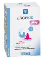 Ergykid Mag Poudre Solution Buvable 14 Sachets à La Ricamarie