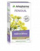 Arkogélules Fenouil Gélules Fl/45
