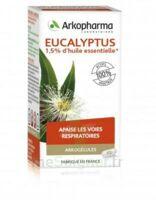 Arkogélules Eucalyptus Gélules Fl/45 à La Ricamarie