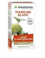 Arkogélules Marrube Blanc Gélules Fl/45 à La Ricamarie