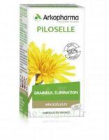 Arkogélules Piloselle Gélules Fl/45 à La Ricamarie