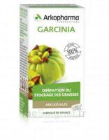 Arkogélules Garcinia Gélules Fl/45 à La Ricamarie