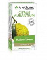 Arkogélules Citrus Aurantium Gélules Fl/45 à La Ricamarie