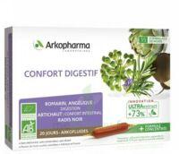 Arkofluide Bio Ultraextract Solution Buvable Confort Digestif 20 Ampoules/10ml à La Ricamarie