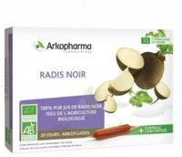 ARKOFLUIDE BIO ULTRAEXTRACT Radis noir Solution buvable 20 Ampoules/10ml à La Ricamarie