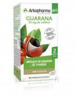 Arkogélules Guarana Bio Gélules Fl/45 à La Ricamarie