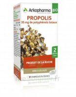 Arkogélules Propolis Bio Gélules Fl/45 à La Ricamarie