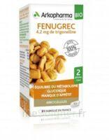 Arkogélules Fenugrec Bio Gélules Fl/40 à La Ricamarie