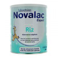 Novalac Expert Riz Lait En Poudre 0-36mois B/800g à La Ricamarie