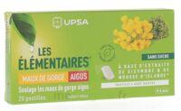 Les Elémentaires Sans Sucre Pastilles Maux De Gorge Aigus Menthe B/20 à La Ricamarie