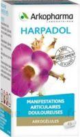 ARKOGELULES HARPAGOPHYTON Gélules Fl/150 à La Ricamarie
