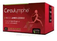 Santé Verte Circulymphe Triple Actions B/60 à La Ricamarie
