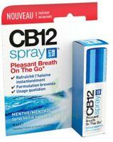 Cb 12 Spray Haleine Fraîche 15ml à La Ricamarie