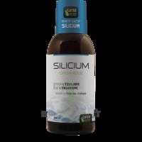 Santé Verte Silicium Solution buvable Fl/500ml à La Ricamarie