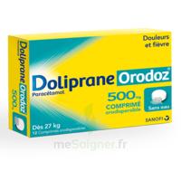 Dolipraneorodoz 500 Mg, Comprimé Orodispersible à La Ricamarie
