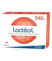 Lacteol 340 Mg, 10 Gélules à La Ricamarie