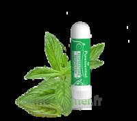 PURESSENTIEL RESPIRATOIRE Inhalation nasal 19 huiles essentielles à La Ricamarie