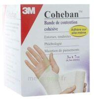 Coheban, Bleu 3 M X 7 Cm