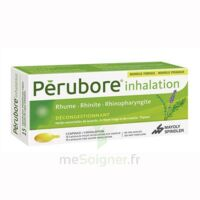 PERUBORE Caps inhalation par vapeur inhalation Plq/15 à La Ricamarie