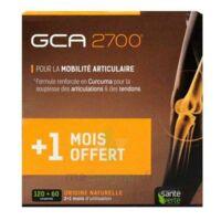 GCA 2700 Comprimés articulations 3*B/60 à La Ricamarie