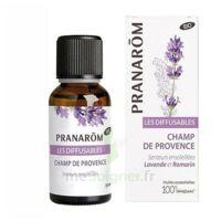 Les Diffusables Champs de Provence à La Ricamarie