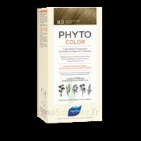 Phytocolor Kit coloration permanente 8.3 Blond clair doré à La Ricamarie