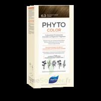 Phytocolor Kit Coloration Permanente 6.3 Blond Foncé Doré à La Ricamarie