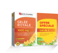 Forte Pharma Gelée royale 1000 mg Solution buvable 2*B/20 Ampoules/10ml à La Ricamarie