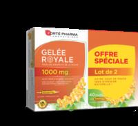 Acheter Forte Pharma Gelée royale 1000 mg Solution buvable 2*B/20 Ampoules/10ml à La Ricamarie