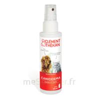 Clément Thékan Caniderma Solution Externe Cicatrisant Spray/125ml à La Ricamarie