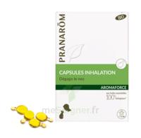 Aromaforce Caps Inhalation Bio B/15 + Inhalateur à La Ricamarie