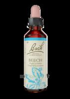Fleurs De Bach® Original Beech - 20 Ml à La Ricamarie