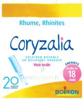 Boiron Coryzalia Solution Buvable Unidose B/20 à La Ricamarie