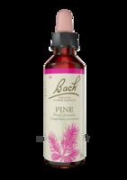 Fleurs De Bach® Original Pine - 20 Ml à La Ricamarie