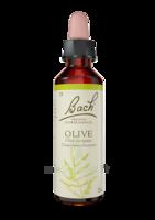 Fleurs De Bach® Original Olive - 20 Ml à La Ricamarie