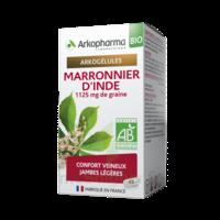 Arkogélules Marronnier d'Inde Bio Gélules Fl/45 à La Ricamarie