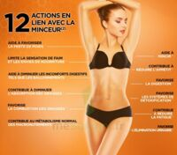 Anaca3+ Minceur 12 En 1 Gélules B/120