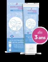 Calmosine Baume à Lèvres Extraits Naturels De Plantes T/20ml à La Ricamarie
