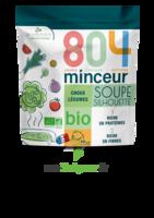 804® Minceur Soupe Silhouette Bio Sachet/180g à La Ricamarie