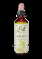 Fleurs De Bach® Original Wild Rose - 20 Ml à La Ricamarie