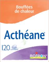 Boiron Acthéane Comprimés B/120 à La Ricamarie